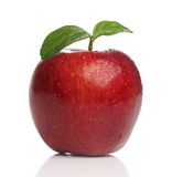 Delicious healthy red apple Stock Photos
