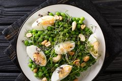Delicious healthy salad of green peas, micro greens, nuts and cooked eggs close-up on a plate. horizontal top view royalty free stock photo