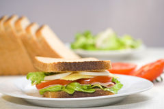 A delicious and healthy sandwich Royalty Free Stock Photography