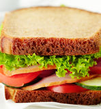 Delicious and healthy sandwich Stock Photography