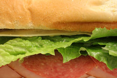 Delicious healthy sandwich upclose. Shot of a delicious healthy sandwich upclose Royalty Free Stock Photography