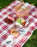 Delicious healthy spread for a summer picnic Royalty Free Stock Photos
