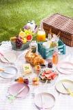 Delicious healthy summer picnic on the grass Stock Photos