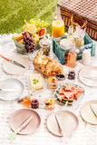 Delicious healthy summer picnic Royalty Free Stock Photo