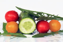 Delicious and healthy tomatoes and cucumbers Royalty Free Stock Photo