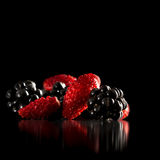Delicious home grown blackberries and strawberries Royalty Free Stock Photo