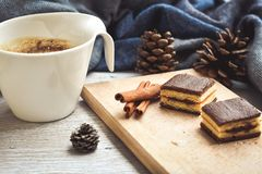 Winter weekend. Delicious home made   cake,cup of coffee , pinecones amd warm  scarf  in a  balcony in snowy day. Lazy winter weekend with a book on the sofa Royalty Free Stock Photos