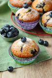 Delicious homemade blueberry muffins with fresh blueberries Stock Photo