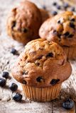 Homemade Blueberry Muffins. Delicious homemade blueberry muffins on a rustic wooden table stock photography