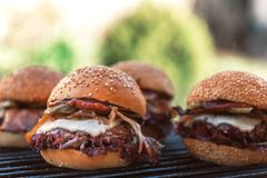 Delicious homemade burgers Royalty Free Stock Photo