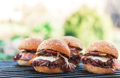 Delicious homemade burgers Royalty Free Stock Photography