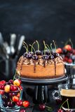 Delicious homemade chocolate cheesecake decorated with fresh che Stock Image