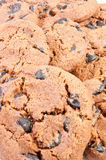 Delicious homemade chocolate chip cookies Royalty Free Stock Photo