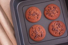 Delicious homemade chocolate chip cookies on a baking tray Royalty Free Stock Image