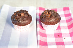 Delicious homemade chocolate muffins on checkered tablecloth. Royalty Free Stock Photo