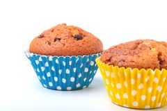Delicious homemade cupcake with chocolate isolated on white background. Muffins. Royalty Free Stock Photos