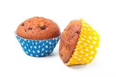 Delicious homemade cupcake with chocolate isolated on white background. Muffins. Royalty Free Stock Photo