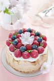 Delicious homemade fruit cake with berries garnish Royalty Free Stock Image