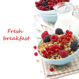 Delicious homemade granola with fresh berries and jug of milk. Isolated on white Royalty Free Stock Photography
