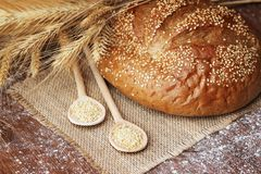 Delicious homemade loaf with sesame seeds Royalty Free Stock Image