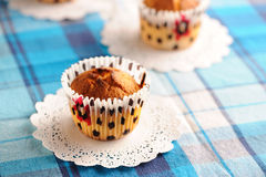 Delicious homemade muffins Stock Photos