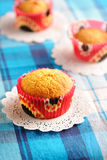 Delicious homemade muffins Royalty Free Stock Images