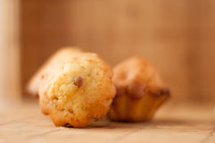 Delicious Homemade muffins with raisins in warm color background. Bakery stock photos