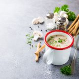 Homemade mushrooms champignons soup. Delicious homemade mushrooms champignons soup with parsley in enamel mug. Healthy food concept with copy space Stock Images