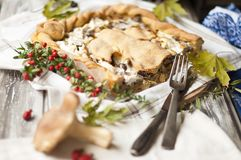 A delicious homemade pie with mushrooms and cheese. Good pastries. Top view. stock photo