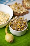 Homemafe sandwiches with eggs salad and sprouts Stock Photo