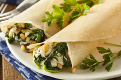 Delicious Homemade Spinach and Feta Savory French Crepes Stock Photography