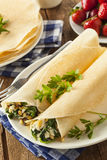 Delicious Homemade Spinach and Feta Savory French Crepes Stock Image