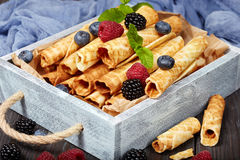 Waffle rolls with berries Stock Images