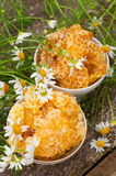 Delicious Honey comb and daisies Stock Photos