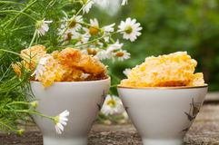 Delicious Honey comb and daisies Royalty Free Stock Photos