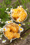 Delicious Honey comb and daisies Stock Photography