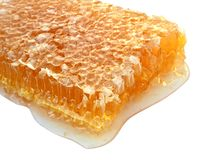 Delicious Honeycomb Stock Images