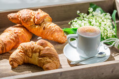 Delicious hot coffee and fresh croissant Stock Images