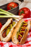 Delicious Hot Dogs On Red Checkered Napkin Royalty Free Stock Photos