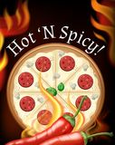 Delicious Hot and Spicy Pizza royalty free illustration