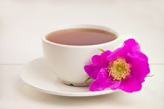 Delicious hot tea from red rosehip. On table Royalty Free Stock Image