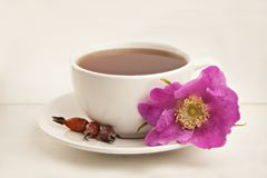 Delicious hot tea from red rosehip Royalty Free Stock Photography