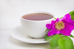 Delicious hot tea from red rosehip. On table Stock Photos