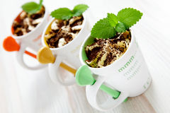 Delicious ice cream Stock Images