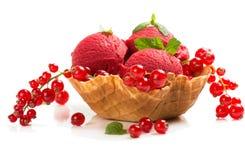 Delicious ice cream Stock Photos