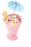 Delicious ice cream sorbet Royalty Free Stock Image
