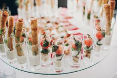 Delicious italian food table at wedding reception. Tomatoes, basil,cheese,prosciutto, greenery and bread appetizers on table at. Wedding or christmas feast stock image