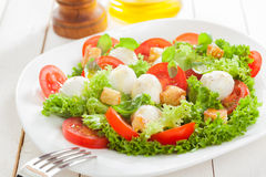 Delicious Italian mozzarella salad with croutons Stock Images