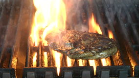 Delicious juicy rib eye steak on a grill stock footage