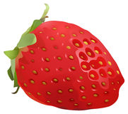 Delicious and juicy stawberry Royalty Free Stock Image